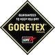 Gore-Tex Paclite Plus